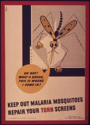 _Keep_out_malaria_mosquitoes_repair_your_torn_screen__-_NARA_-_514969