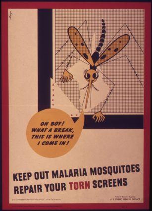 _Keep_out_malaria_mosquitoes_repair_your_torn_screen__-_NARA_-_514969